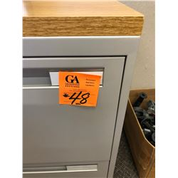 1 Newer Grey 2 Door Lateral File Cabinet w/wood grain top