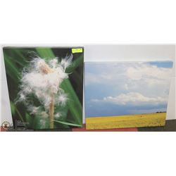 PAIR OF STRETCHED CANVAS PICTURES