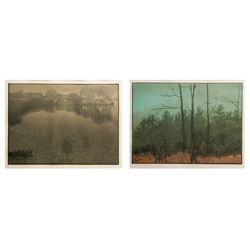 Teri Malo, Along the Fences & In the Clearing, Lot of 2 Lithographs