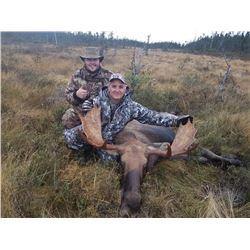 *Newfoundland – 5 Day – Eastern Canada Moose and Black Bear Hunt for One Hunter