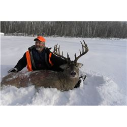 *Manitoba – 6 Day – Whitetail Deer and Wolf Hunt for 1 Hunter