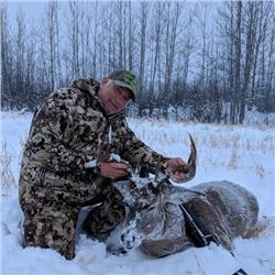 *British Columbia – 7 Day – Whitetail Hunt for One Hunter