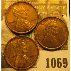 1069 _ (3) 1909 P VDB Lincoln Cents. All Almost Uncirculated.
