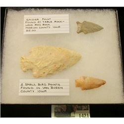 "1421 _ ""Snider Point Found at Table Rock-Lake Red Rock Marion County Iowa"", & ""2 Small Bird Points F"