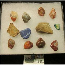 "1423 _ (12) Colorful Agates in a 5"" x 6"" glass-fronted case. (7 pcs. total)."