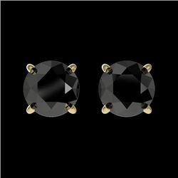 1 CTW Fancy Black VS Diamond Solitaire Stud Earrings 10K Yellow Gold - REF-25F2N - 33054