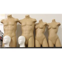 LOT OF MANNEQUINS: 2 MALE & 2 FEMALE HALF BODIES