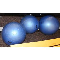 LOT OF 3 ASSORTED EXERCISE BALLS