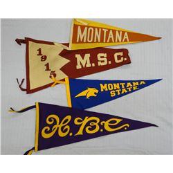 MSC and U of M vintage pennants, 1915