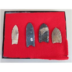 Collection of Paleo Points