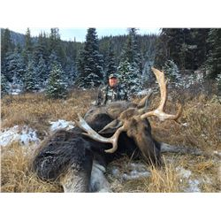Shiras Moose Hunt