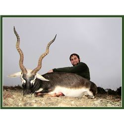 Blackbuck Hunt