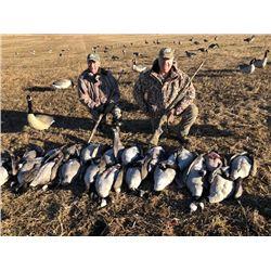 Goose / Duck Hunt