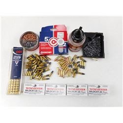 ASSORTED 22 AND AIRGUN AMMO