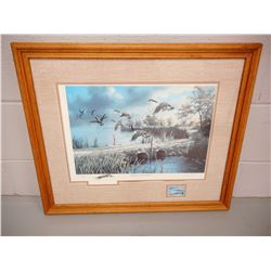 FRAMED NORTH AMERICAN GAME BIRD SERIES ARTWORK