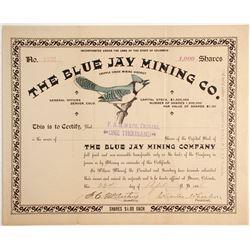 Blue Jay Mining Company Stock