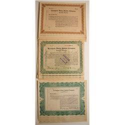Lexington Union State Company Stock Certificates (2 Different)