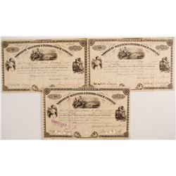 Woodruff Sleeping & Parlor Coach Company Stock Certificates