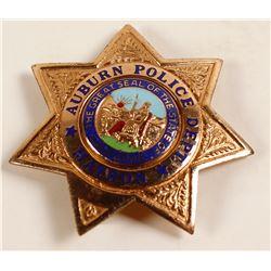 Auburn Matron Police Badge