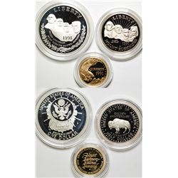 Mount Rushmore Commemorative Coin Proof Set