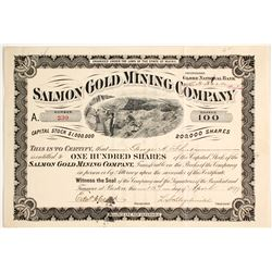 Salmon Gold Mining Company Stock