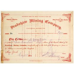 Bradshaw Mining Company Stock