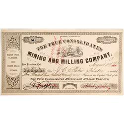 True Consolidated Mining & Milling Company Stock, El Dorado County