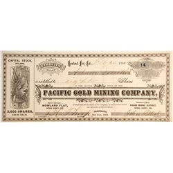 Pacific Gold Mining Company, Wahoo Mining District, Sierra County