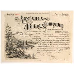 Arcadia Mining Company Stock