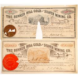 Bunker Hill Gold and Silver Mining Company Stock