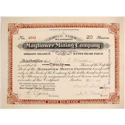 Mayflower Mining Co. Stock