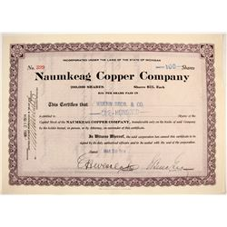 Naumkeag Copper Co. Stock