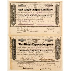 Ridge Copper Co Stocks (2)