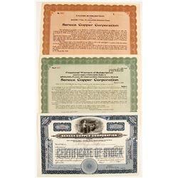Seneca Copper Corp Stocks (2)