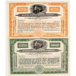 Seneca Copper Mining Stocks (2)