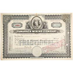 Tamarack Mining Co. Stock