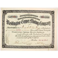 Washington Copper Mining Stock