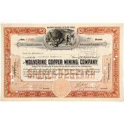 Wolverine Copper Mining Co