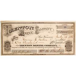 Trenton Mining Company Stock