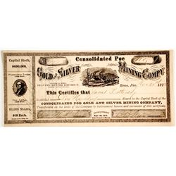 Consolidated Poe Gold and SIlver Mining Company Stock