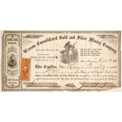 Wasson Consolidated Gold and Silver Mining Company Stock