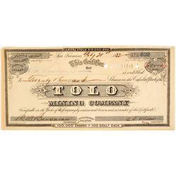 Tolo Mining Company Stock