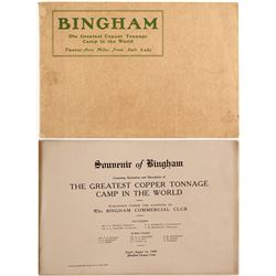 Bingham The Greatest Copper Tonnage Camp in the World Booklet