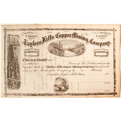 Taylors Falls Copper Mining Co. Stock