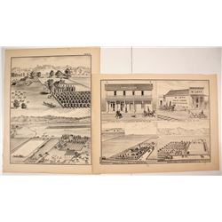 W. T. Galloway Lithographs