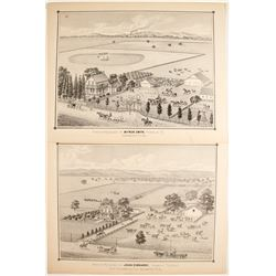 Thompson & West Lithographs
