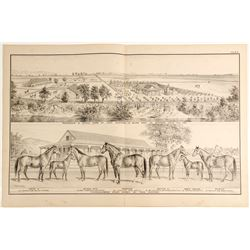 Lithograph: Stock Farm of Theo. Winters