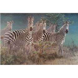 Framed Zebra Print
