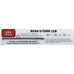 D04 - RCRA U-TURN 11B