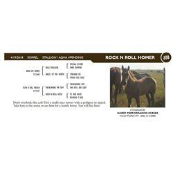 ROCK N ROLL HOMER